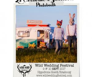 Wild wedding festival
